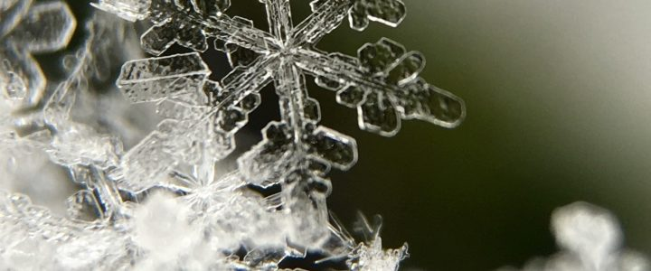 Children-The Strongest blizzards start with a single snowflake.